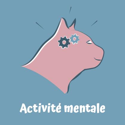 Pipolino permet une activité mentale pour le chat